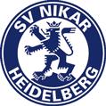 logo_SVN